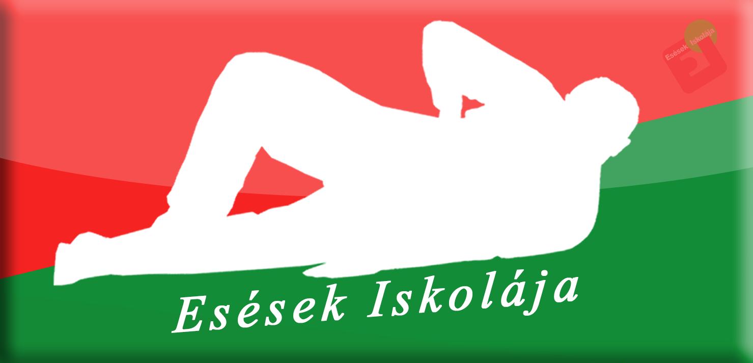 eie-logo-2014-piros-zold